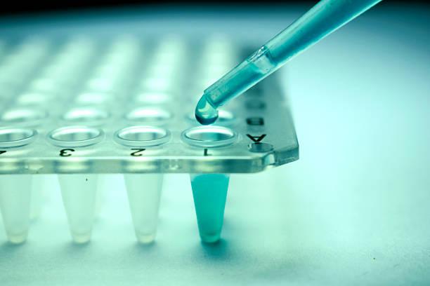 stamceltransplantatie reuma